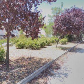 Apadrina un parque