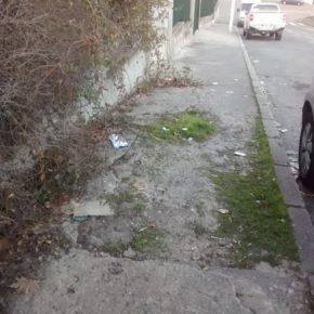 Ciudadanos (Cs) Colmenar Viejo exige la limpieza urgente de los Polígonos Sur y La Mina